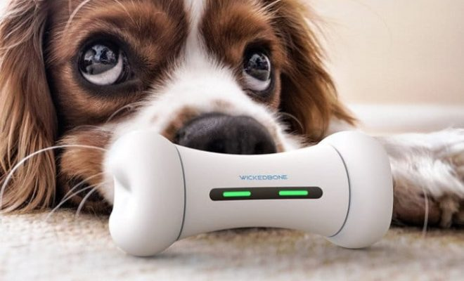 WickedBone-Smart-Interactive-Dog-Toy