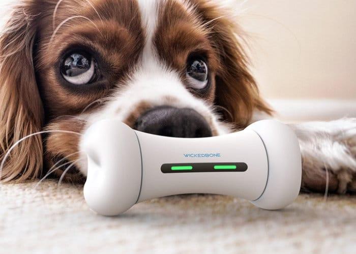 WickedBone-Smart-Interactive-Dog-Toy
